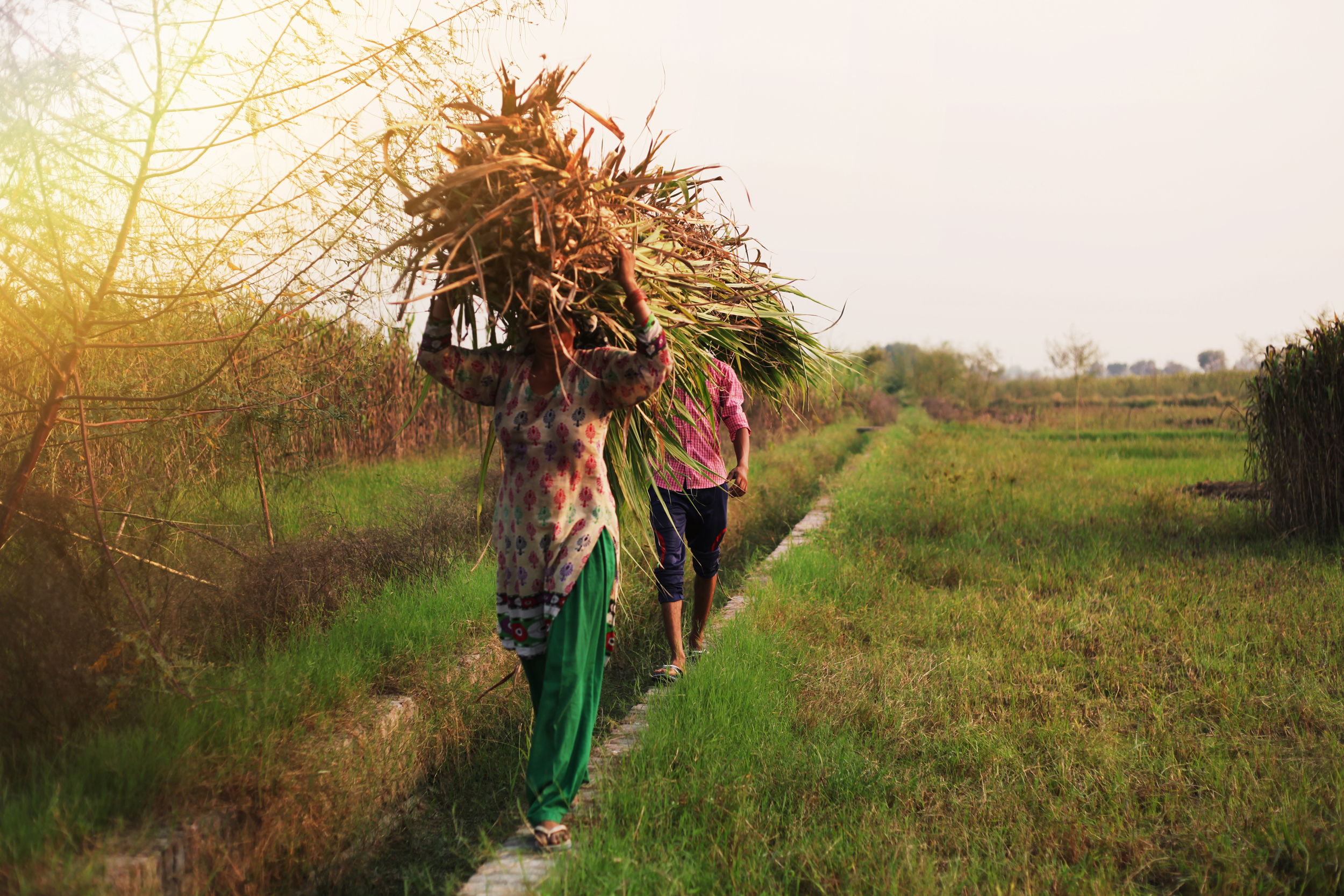 Gender Is A Hot Topic In Agriculture. It's Missing The Point